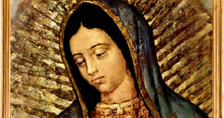 Día 3º – Triduo Virgen de Guadalupe – Haced lo que Él os diga